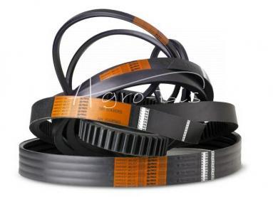 Pasek HC-8600 rozdrabniacza Claas 061253