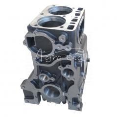 Blok silnika C330 import