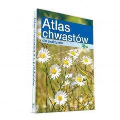 Atlas chwastów dla praktyków